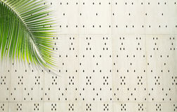 Coconut leaf over white perforated cement wall Stock Images