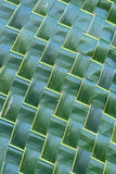 Coconut leaf weave pattern. Royalty Free Stock Photography