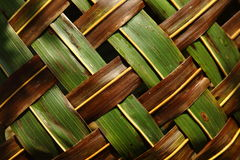 Coconut leaves. Interlocked coconut leaves in zigzag direction Royalty Free Stock Image