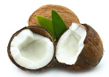 Coconut with leaves Royalty Free Stock Photography
