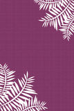 Coconut leaves. Two coconut leaves in a purple background Royalty Free Stock Image