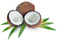 Coconuts with leaves. An opened coconut and another whole on leaves on a white background Stock Photos