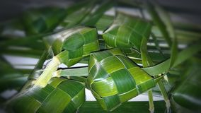 Coconut leaves Craft stock photo