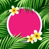 Coconut leaves and frangipani flowers with place for text vector illustration