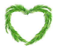 Coconut leaves heart. Green leaves, summer Royalty Free Stock Photo