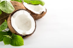 Coconut. With leaves isolated on white background. Space for text on the right stock photo
