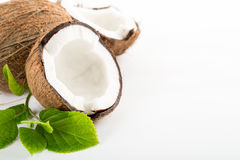 Coconut with leaves isolated on white. Background. Space for text on the right Royalty Free Stock Photography