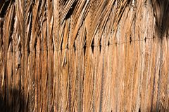 Coconut leaves are tied together to be fence and wall Royalty Free Stock Photos