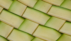 Coconut leaves weave pattern Stock Photos