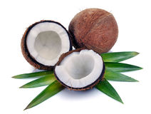 Coconut with leaves Stock Photo
