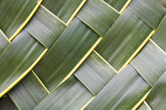 Coconut leaves woven background Royalty Free Stock Image