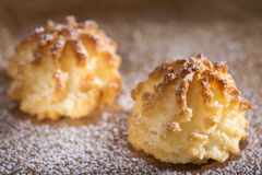 Coconut macaroons christmas cookies with powdered sugar Royalty Free Stock Photos