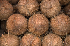 Coconut on the market Stock Images
