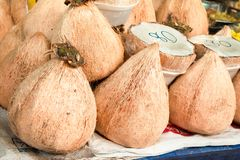 Coconut meat, thick it delicious. stock image