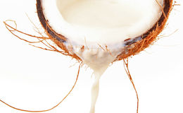 Coconut milk. Close up on milk of coconut stock photo