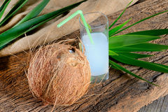 Coconut and milk Royalty Free Stock Photo
