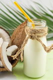 Coconut milk in a bottle Royalty Free Stock Photos