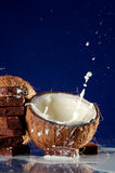 Coconut, Milk and Chocolate Royalty Free Stock Photo