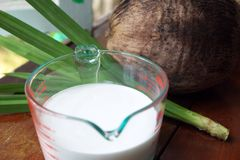 Coconut milk and panda Stock Photos