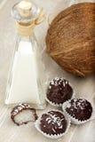 Coconut milk rice truffles and coconut cream Stock Photography