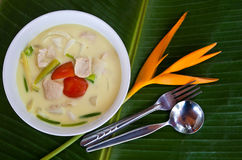 Coconut milk soup with chicken. Local thai style coconut milk soup with chicken (Tom kha kai Royalty Free Stock Photos