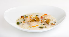 Coconut milk soup with chicken and vegetables Stock Photos