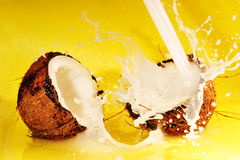 Coconut milk splash Stock Photography