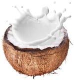 Coconut with milk splash inside. Stock Images