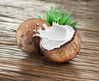 Coconut with milk splash inside. Royalty Free Stock Image