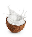 Coconut with milk splash on white background. Stock Photos