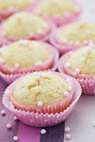 Coconut muffins stock photography