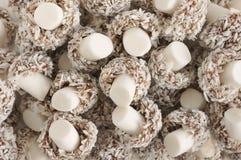 Coconut Mushrooms Stock Photo