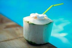 Coconut near the swimming pool. Fresh Coconut near the swimming pool stock image