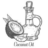 Coconut nut oil bottle, leaf, plant. Hand drawn engraved vector sketch etch illustration. Ingredient for hair and body care cream, lotion, treatment, moisture Royalty Free Stock Photo