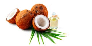 Coconut oil in a bottle with coconuts and green palm tree leaf isolated on a white background. Skincare Stock Photography