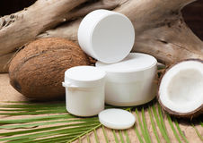 Coconut oil with dry and fresh coconut Royalty Free Stock Photos