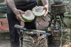 Coconut with a copra and special knife. stock image