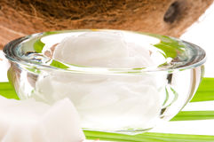 Coconut, oil and palm leaf. exotic scene Royalty Free Stock Photography