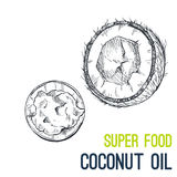 Coconut oil. Super food hand drawn sketch vector. Illustration Royalty Free Stock Photography