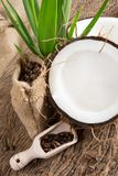 Coconut opened Royalty Free Stock Photo