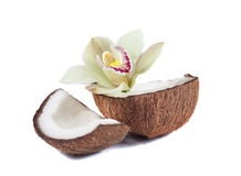Coconut and orchid Royalty Free Stock Photography