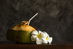 Coconut ornamented with Plumeria Stock Images