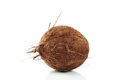 Coconut over white Stock Images