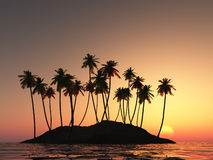 Coconut palm. Illustration of coconut palm trees and sunset Royalty Free Stock Images