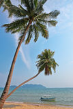 Coconut palm and boat on a tropical beach Stock Photo