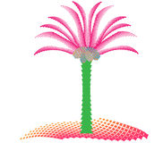 Coconut palm on the island Royalty Free Stock Photo