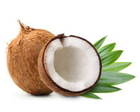 Coconut with palm leaves. Isolated on white royalty free stock photo