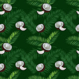 Coconut, palm leaves seamless vector pattern on green background. Royalty Free Stock Photo