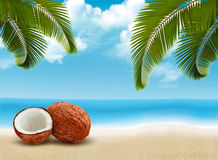 Coconut with palm leaves. Summer vacation background.
