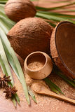 Coconut palm sugar Royalty Free Stock Images